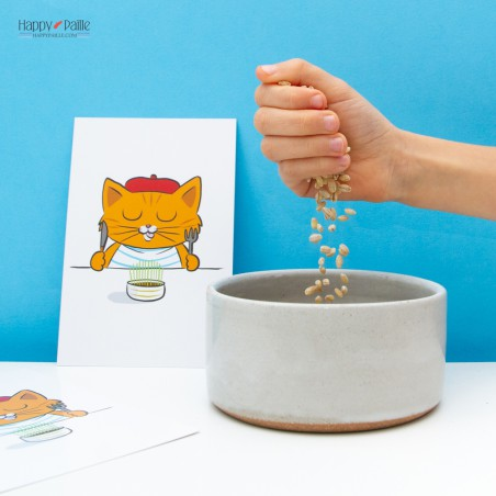 Kit Herbe a chat et carte chat